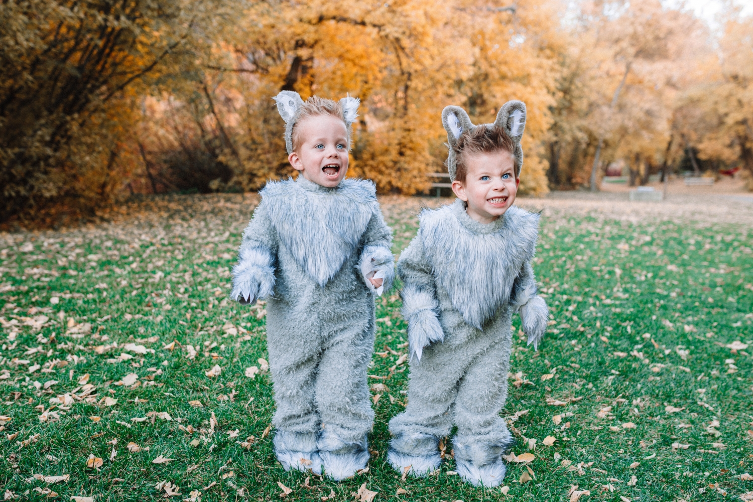 wolf costumes