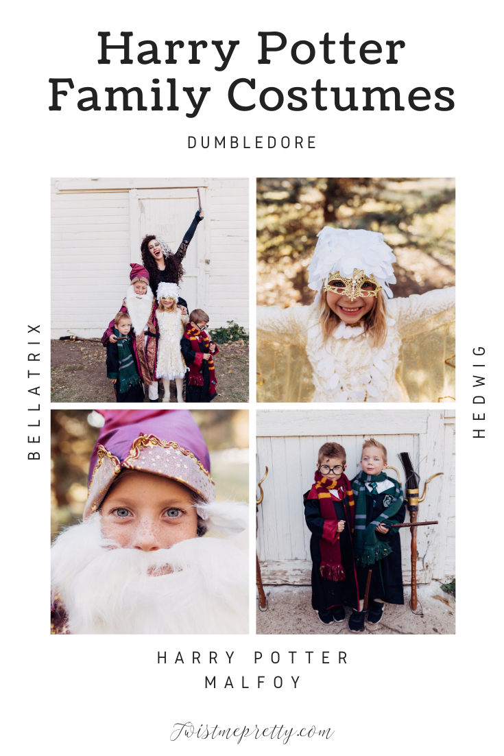 The cutest Harry Potter themed costumes for Halloween will get your whole family involved. From Bellatrix LeStrange to Dumbldore, Hedwig and Malfoy.