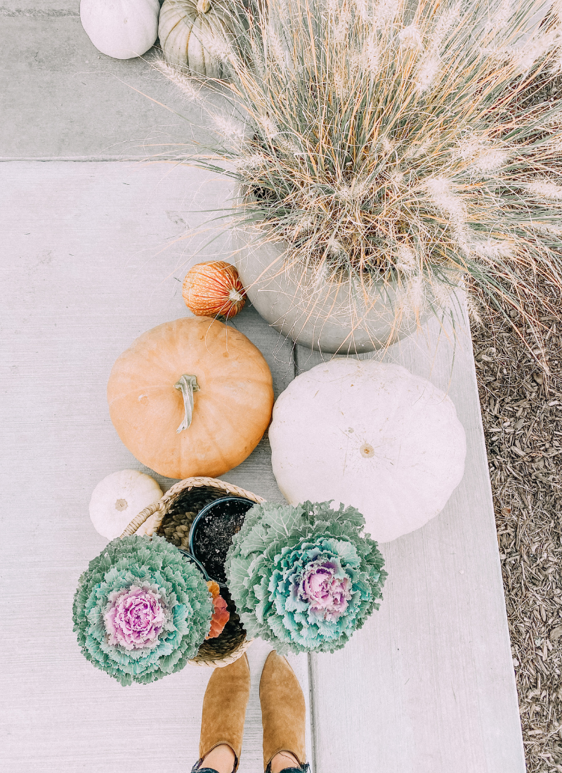 Pumpkins, kale, and grasses are perfect for a fall front porch www.twistmepretty.com